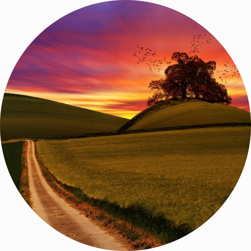 Tag på en rejse tilbage i healingens tegn
