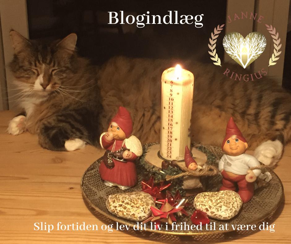 En dejlig afslappet kat ligger på et bord, og en juledekoration står ved siden af